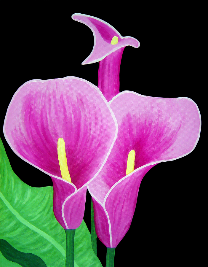 Pink Painting - Pink Calla Lillies 2 by Angelina Vick