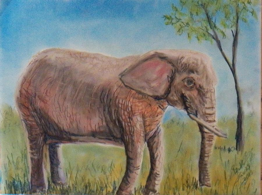 This Elephant Is Pink Due To The Red Dirt At The Riverbanks Zoo In Columbia Pastel - Pink Elephant by Richard Goohs