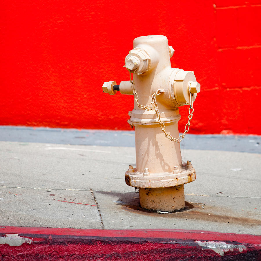 Hydrant Photograph - Pink Fire Hydrant by Art Block Collections