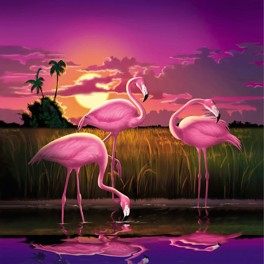 Artist Turner Paintings Flamingos Related Keywords