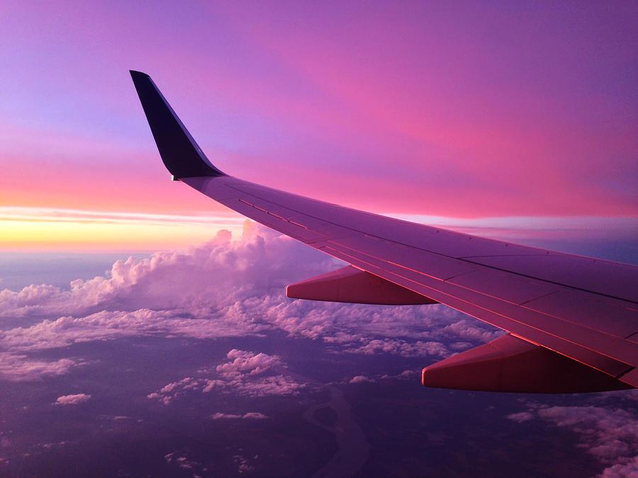 Pink Photograph - Pink Flight by Chad Dutson