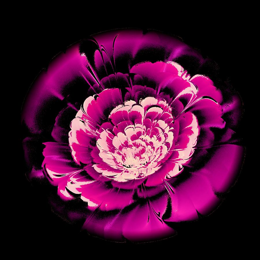 Pink Flower Digital Art  - Pink Flower Fine Art Print