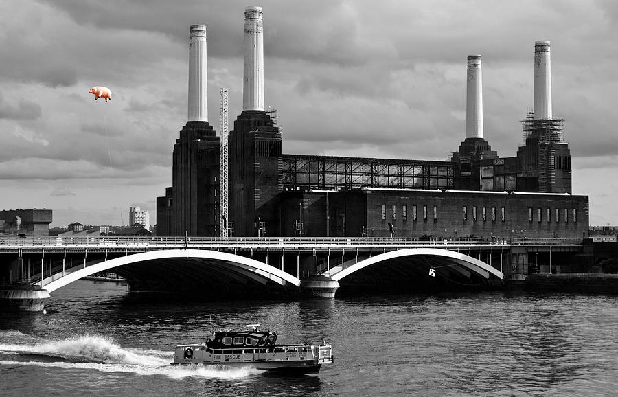 Pink Floyds Pig At Battersea Photograph  - Pink Floyds Pig At Battersea Fine Art Print