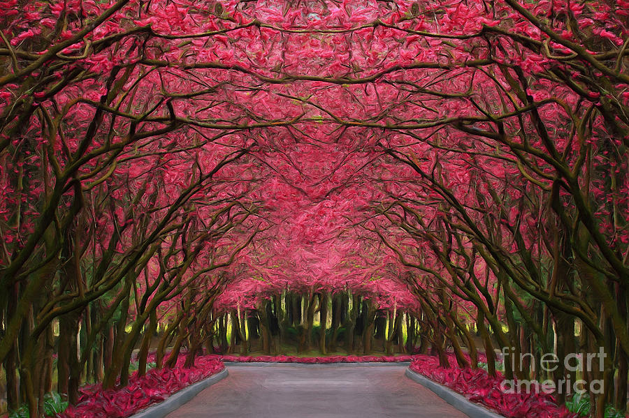 Pink Forest Way Painting  - Pink Forest Way Fine Art Print