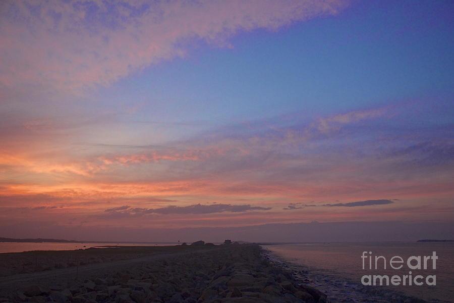 Pink Hues Photograph