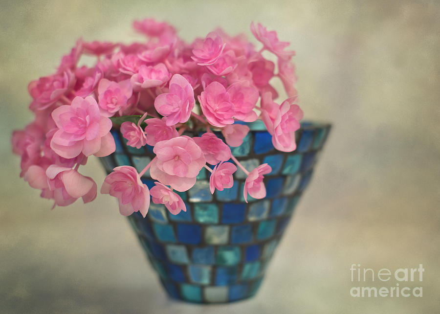 Pink Hydrangeas In A Vase Photograph