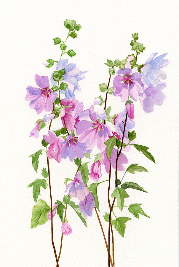 Pink Mallow Flowers Painting