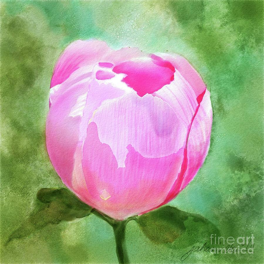 Pink Peony Bud Painting