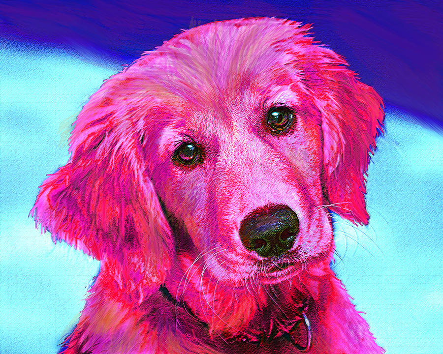 Pink Retriever Digital Art