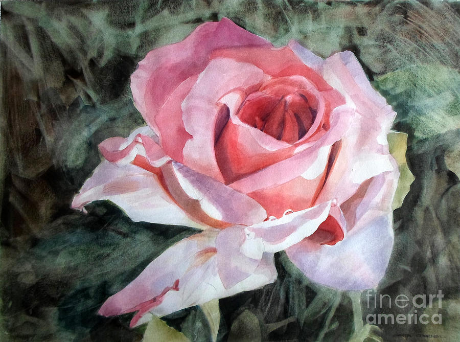 Pink Rose Greg Painting