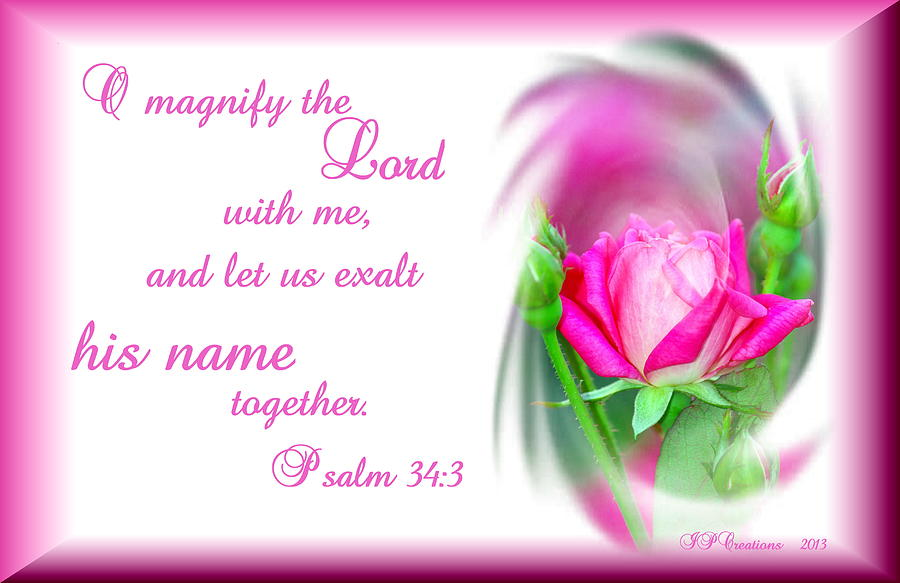 Pink Rose Psalm 34 3  Photograph