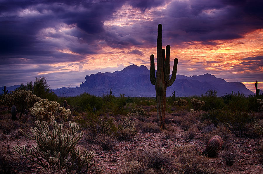 Pink Skies At The Superstitions Photograph