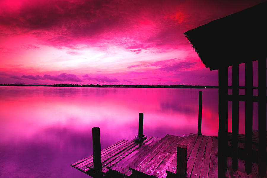 Pink Sunrise Photograph by Hafiz Afraizal