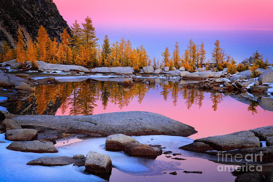 Alpine Lakes Wilderness Photograph - Pink Tarn by Inge Johnsson