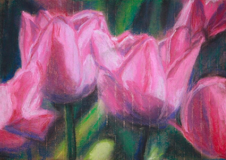 Pink Tulip Drawing - Pink Tulips by Sarah Vandenbusch