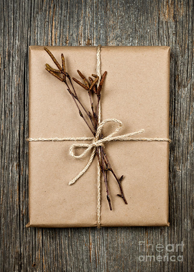 Plain Gift With Natural Decorations Photograph