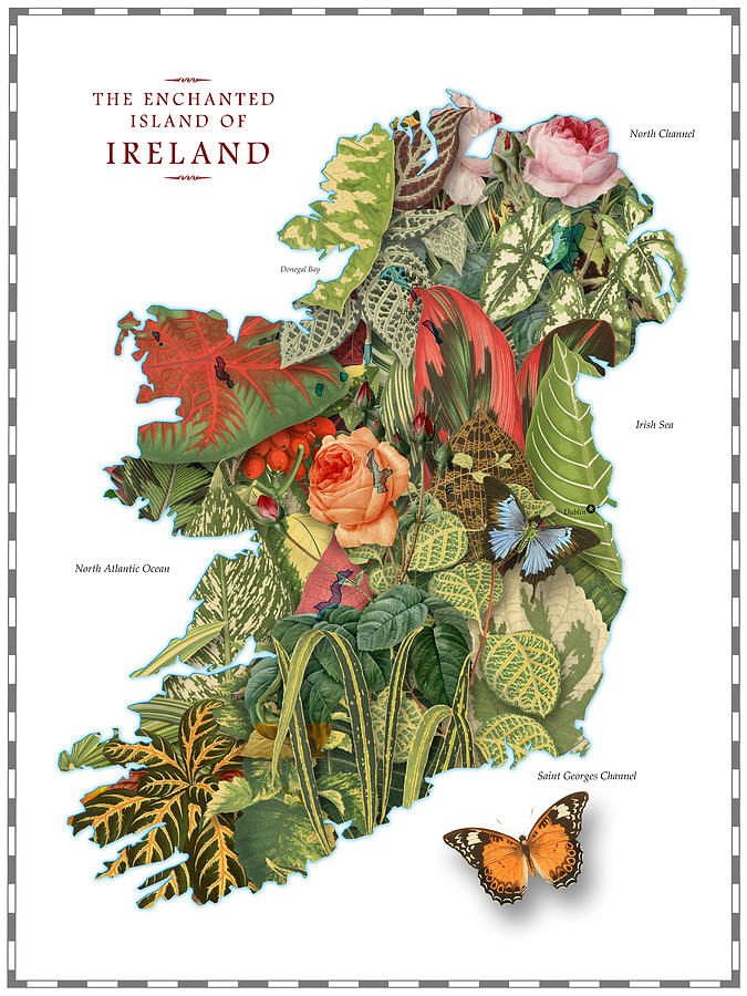 Plant Map Of Ireland Digital Art  - Plant Map Of Ireland Fine Art Print