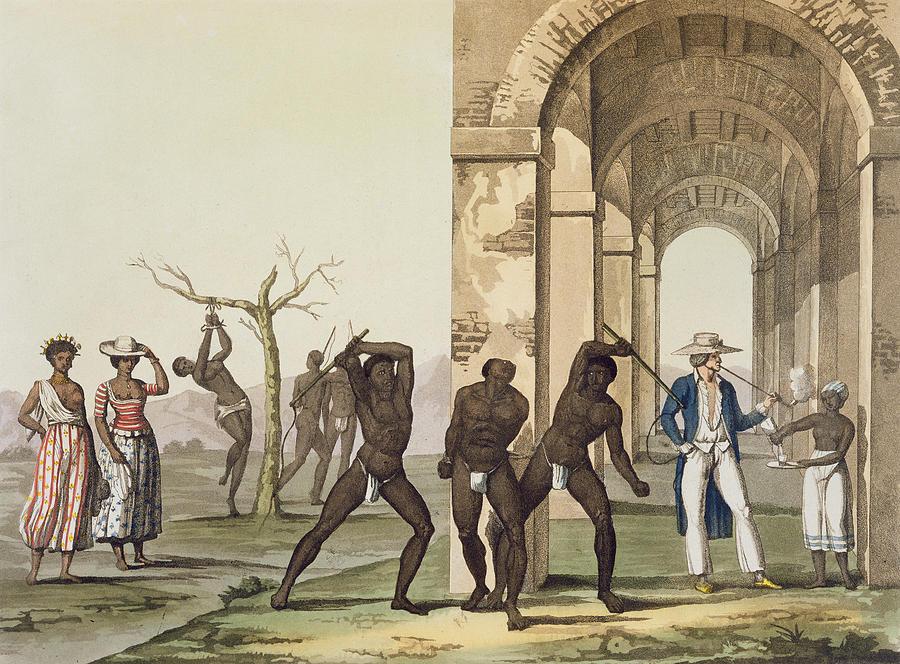 Plantation In Surinam, Illustration Drawing
