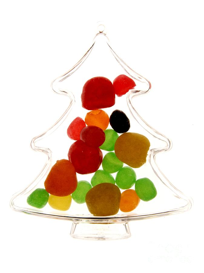 Freshness Photograph - Plastic Christmas Tree Containing Sweet by Bernard Jaubert