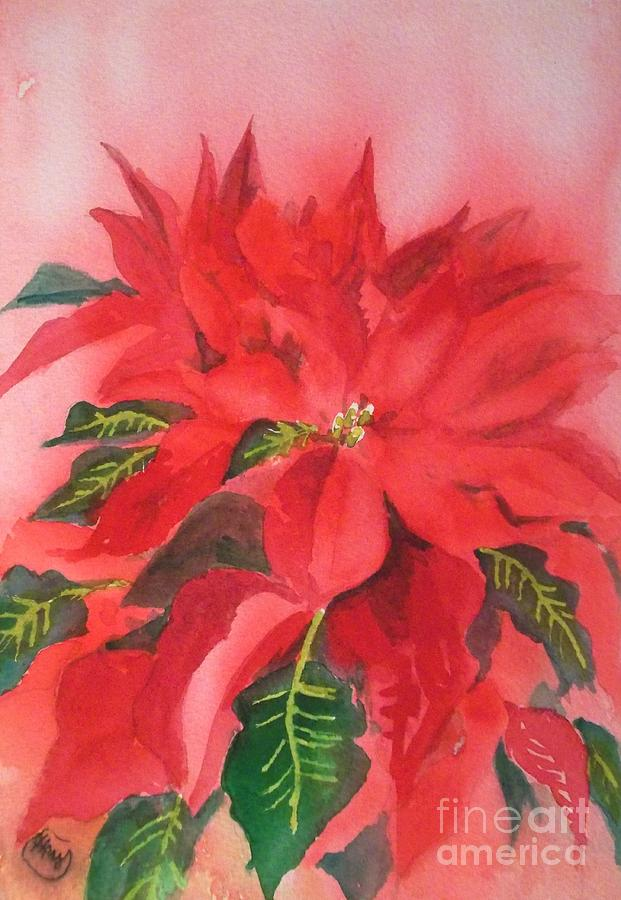 Poinsettia Painting  - Poinsettia Fine Art Print