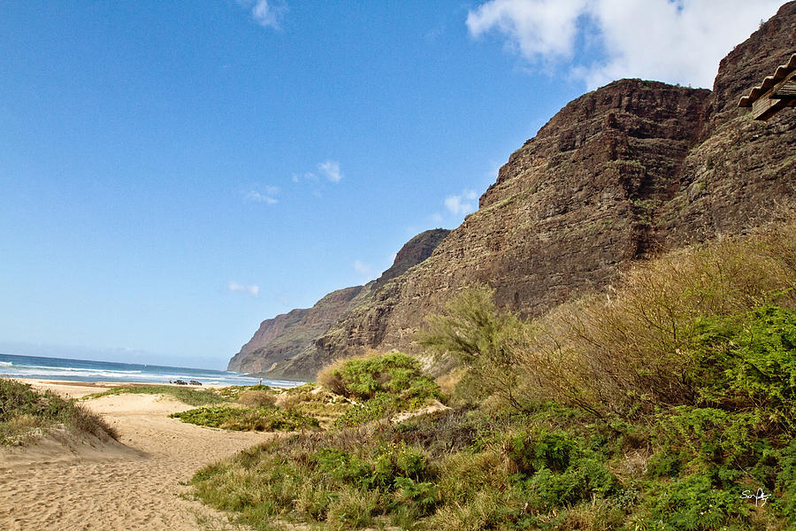 Polihale Beach Photograph