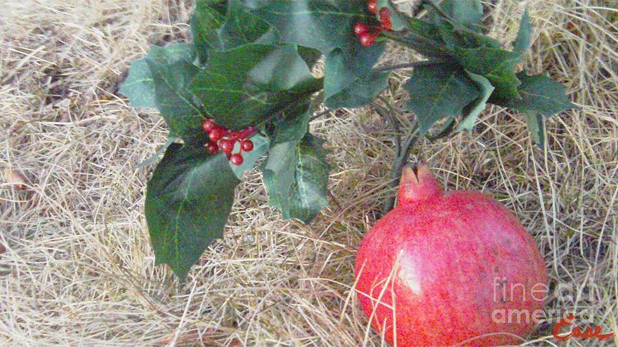 Pomegranate Love Forever Photograph