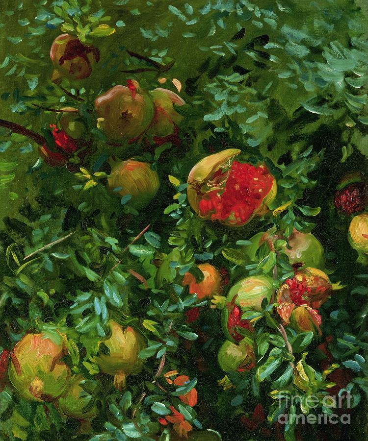 John Singer Sargent Painting - Pomegranates    Majorca by John Singer Sargent