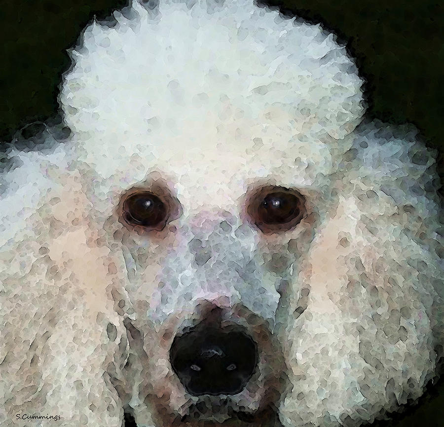Poodle Art - Noodles Painting