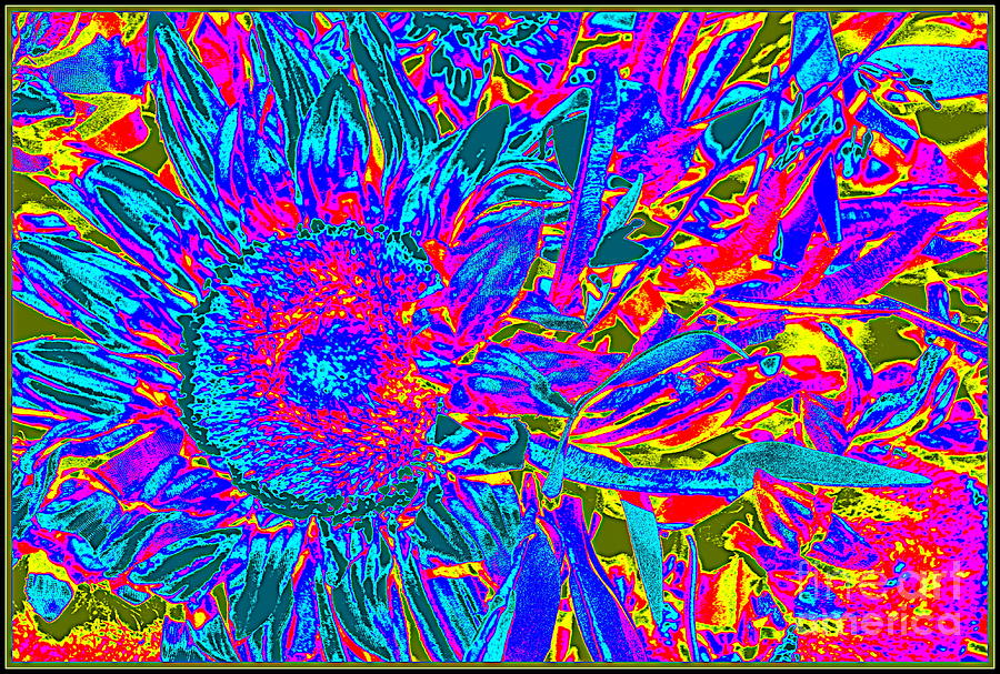 Pop Art Blossoms Photograph