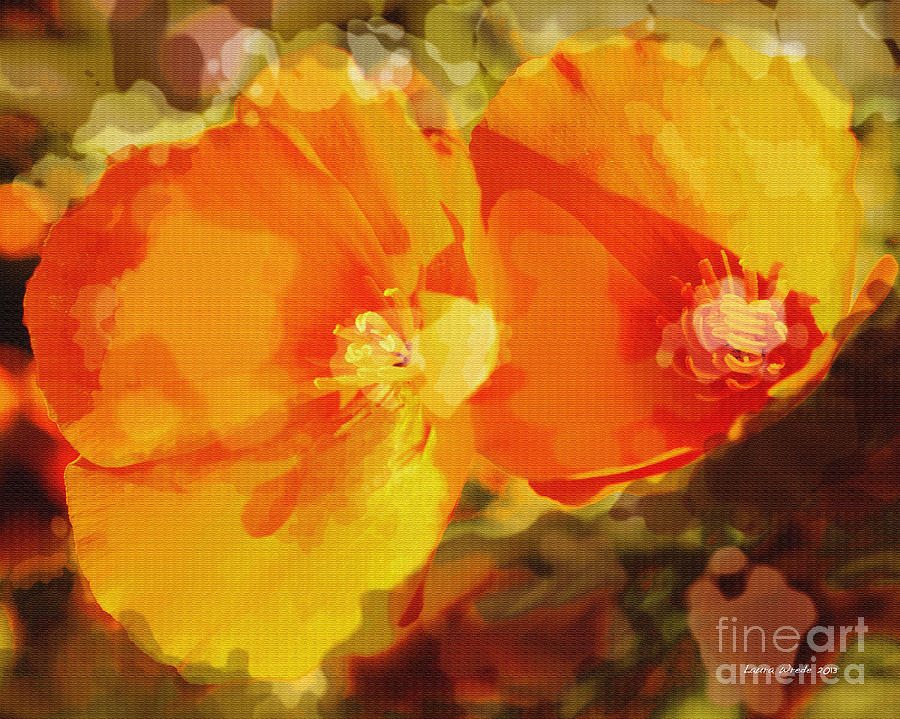 Abstract California Poppies Photographs Canvas Prints Canvas Photograph - Poppies On Fire by Artist and Photographer Laura Wrede