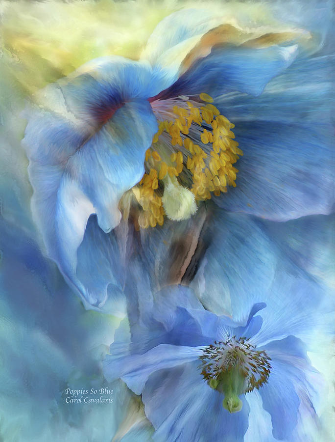Poppies So Blue Mixed Media  - Poppies So Blue Fine Art Print