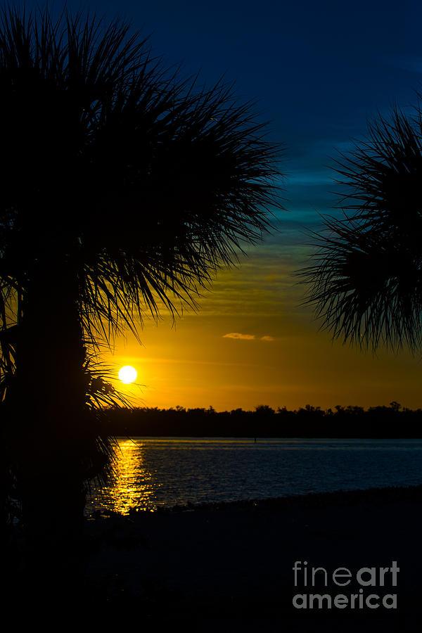 Port Charlotte Beach Photograph - Port Charlotte Beach Sunset In January by Anne Kitzman