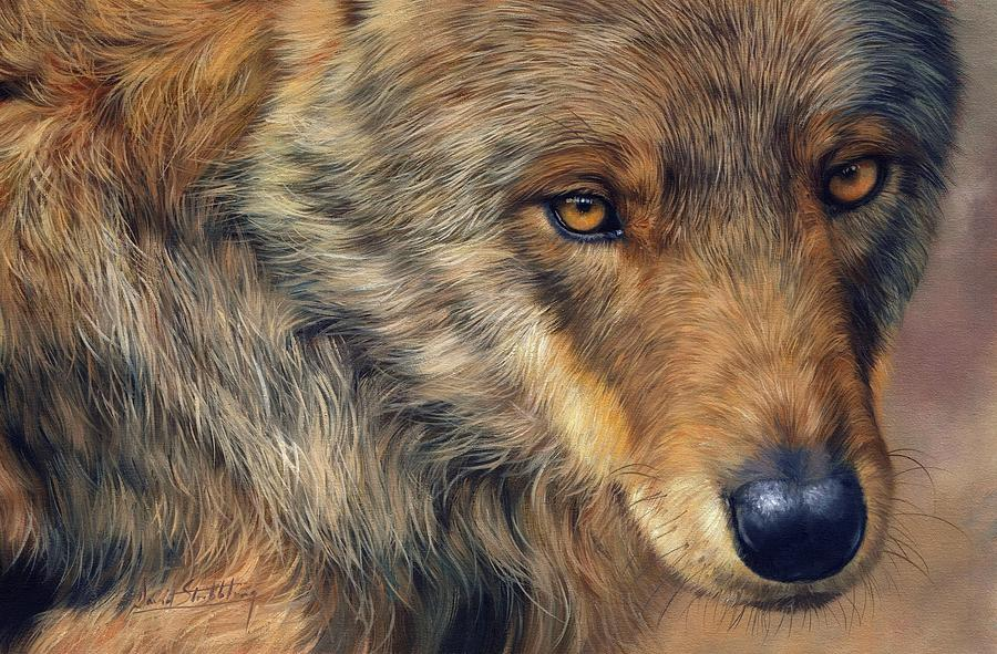 Wolf Painting - Portrait Of A Wolf by David Stribbling
