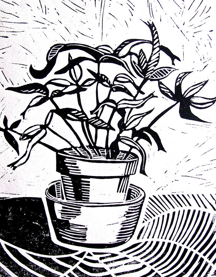 Potted Plant Drawing Potted plant drawings - potted Potted Plant ... Laz Alonso Wife 2014