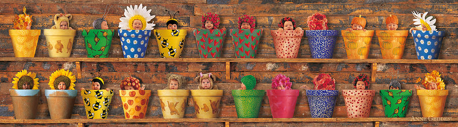 Potting Shed Photograph - Potting Shed by Anne Geddes