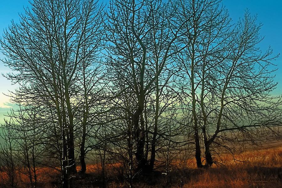 Prairie Autumn Painting
