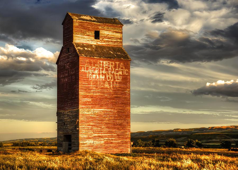 Prairie Sentinel Photograph