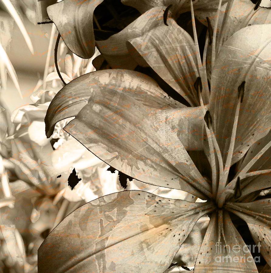 Mixed Media - Pram by Yanni Theodorou