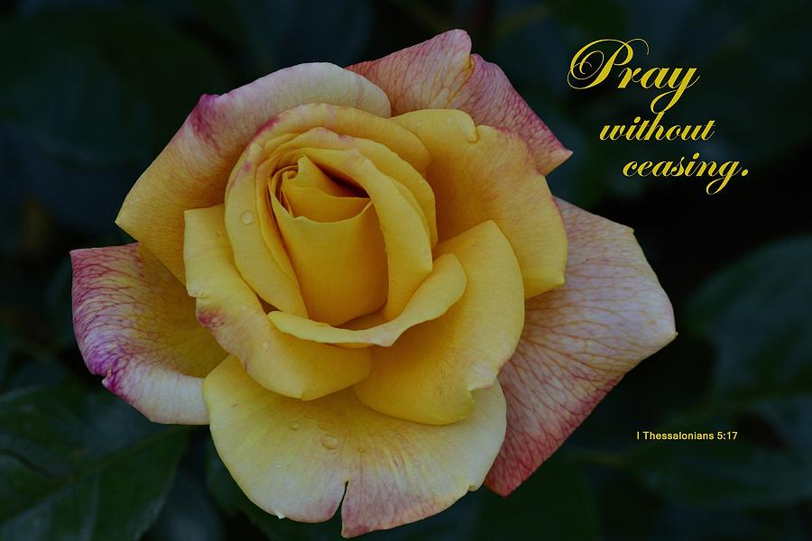 Pray Without Ceasing Photograph