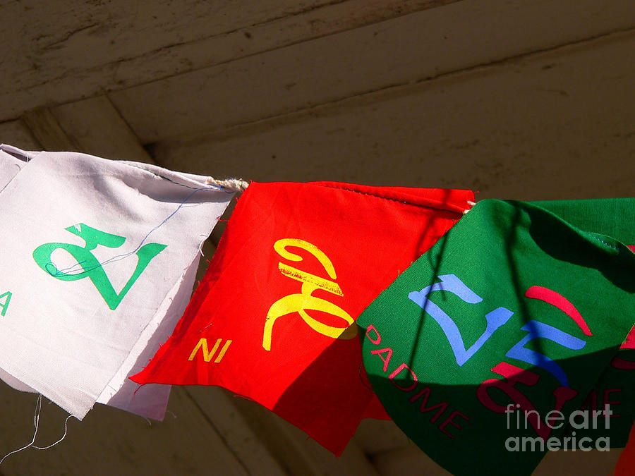Prayer Flags Photograph  - Prayer Flags Fine Art Print