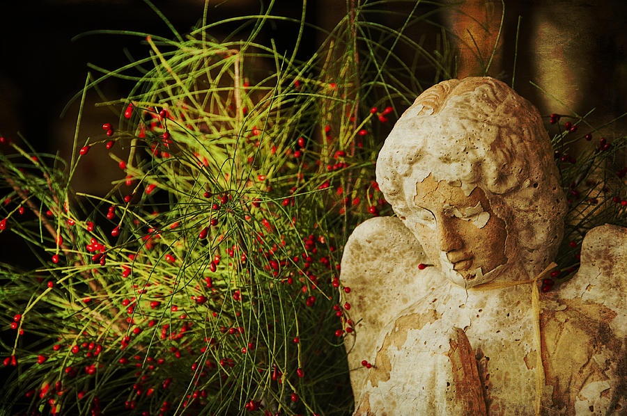 Angel Photograph - Praying For Peace by Terry Rowe