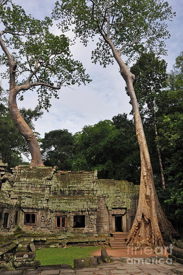 Preah Khantemple At Angkor Wat Photograph