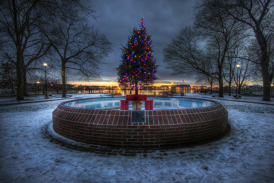 Prescott Park Christmas Tree Photograph  - Prescott Park Christmas Tree Fine Art Print