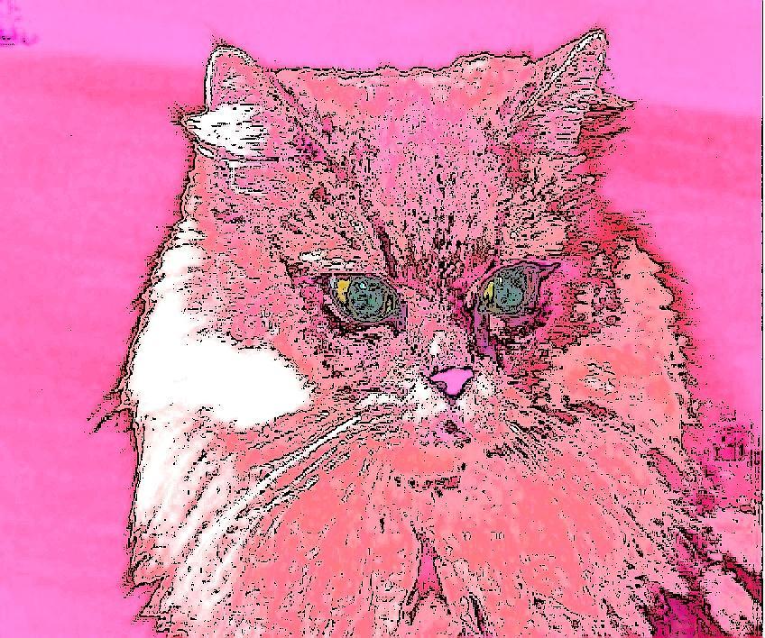 Pretty Kitty In Pink Digital Art