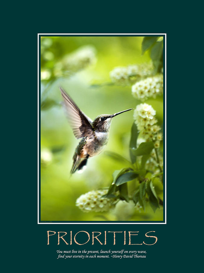 Priorities Inspirational Motivational Poster Art Photograph  - Priorities Inspirational Motivational Poster Art Fine Art Print