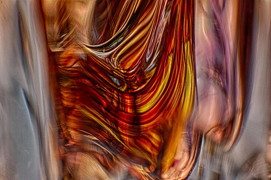 Glass Photograph - Profile by Omaste Witkowski
