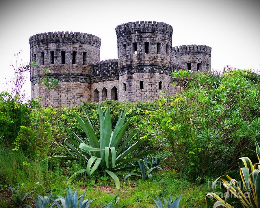 Castle Photograph - Promises by Richard Burr