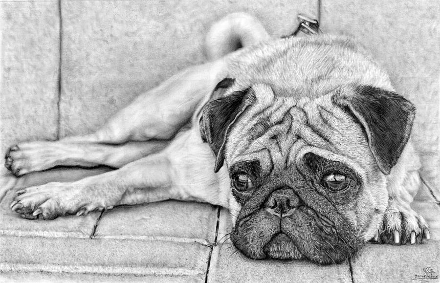 pugs coloring pages to print - photo#33
