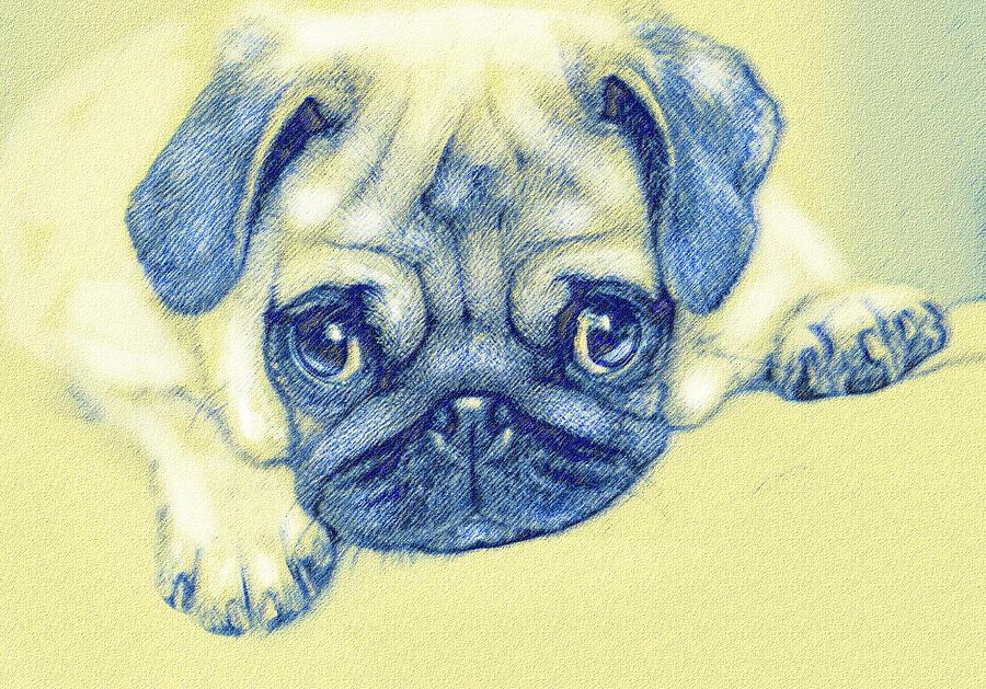 Jane Schnetlage Digital Art - Pug Puppy Pastel Sketch by Jane Schnetlage