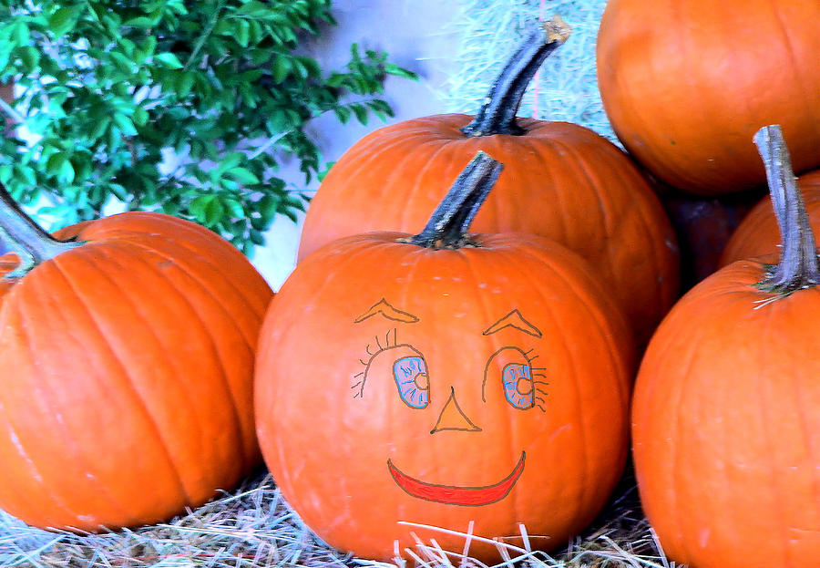 Pumpkin Smile Photograph